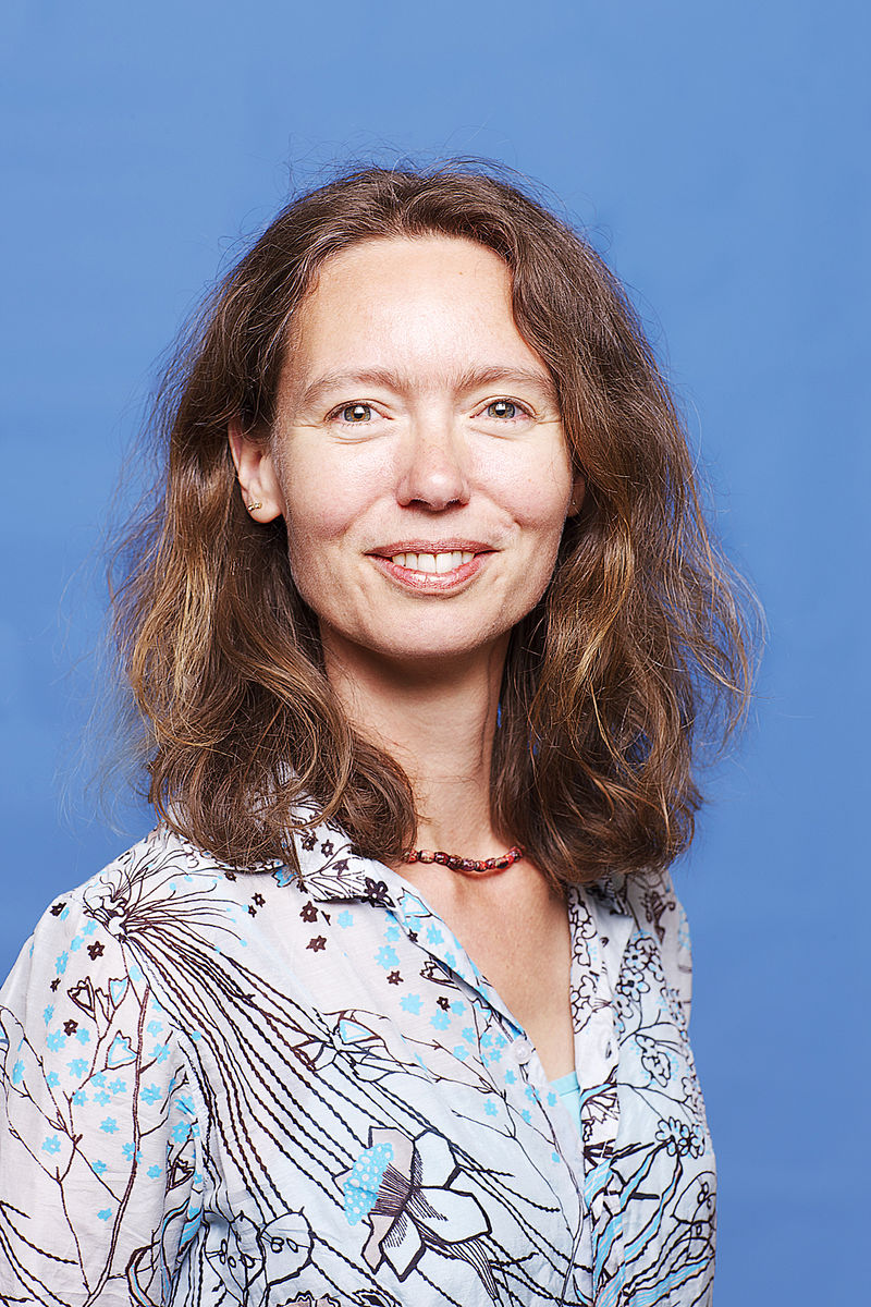 Anne Koning, Chairman, Branch organisation Play & Movement (