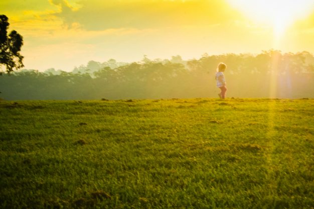 Image result for child in meadow
